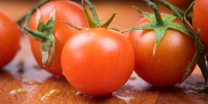 Edukacija djelatnika o mediteranskoj prehrani
